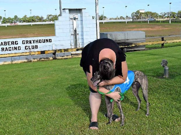 EMBRACE: Melissa Carter hugs Wilby Dusty after the greyhound won the Bundaberg Cup. Her father Phil is the trainer of the dog.
