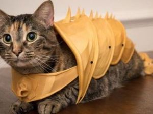 You can now 3D print armour for your cat