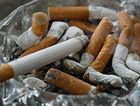 Almost two million illegal cigarettes have been seized in raids.