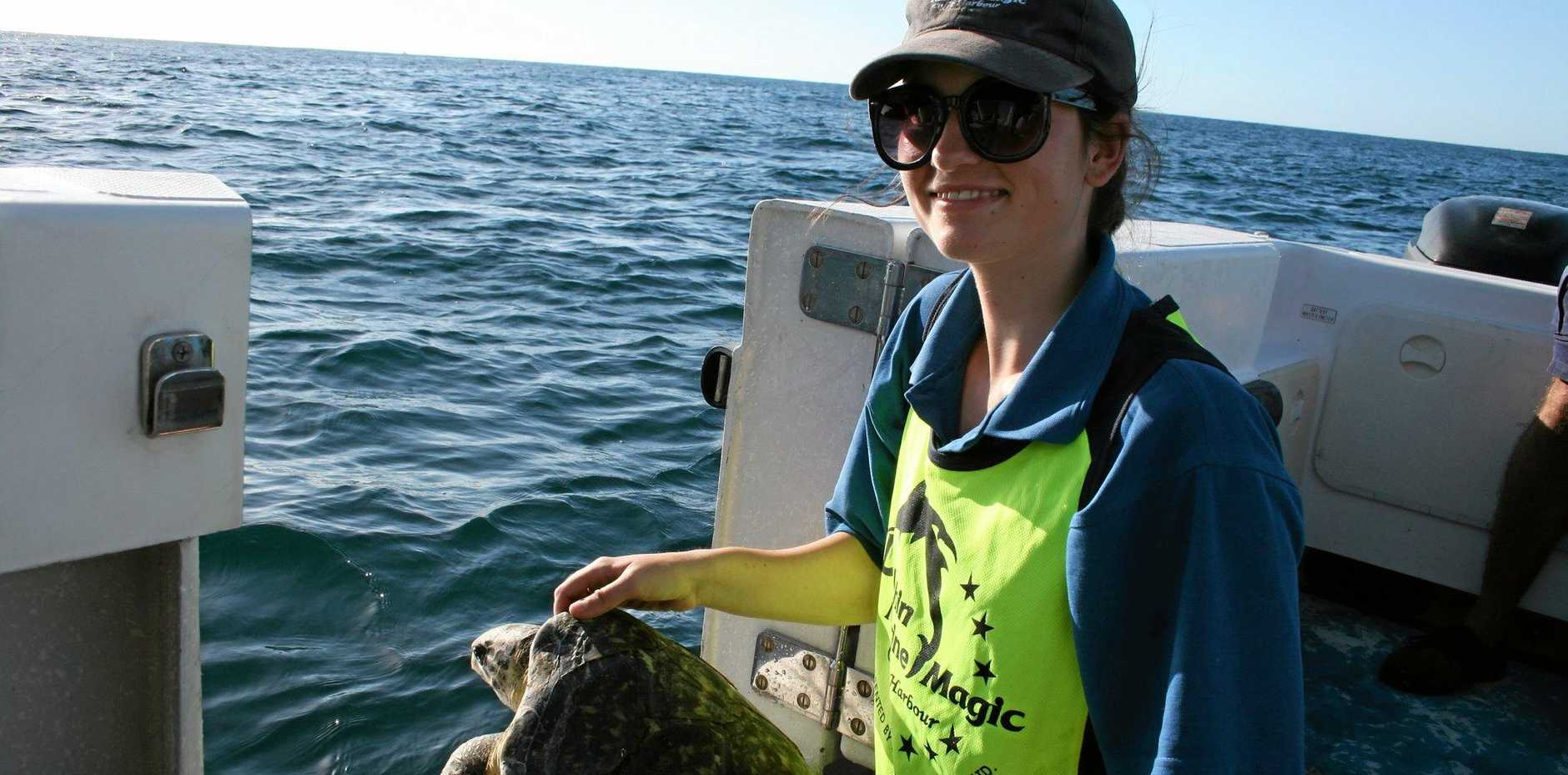 GOING HOME: Merri Pedler, a Bachelor of Science student from Flinders University in Adelaide, gives a marine turtle a new chance at life after rehabilitation.