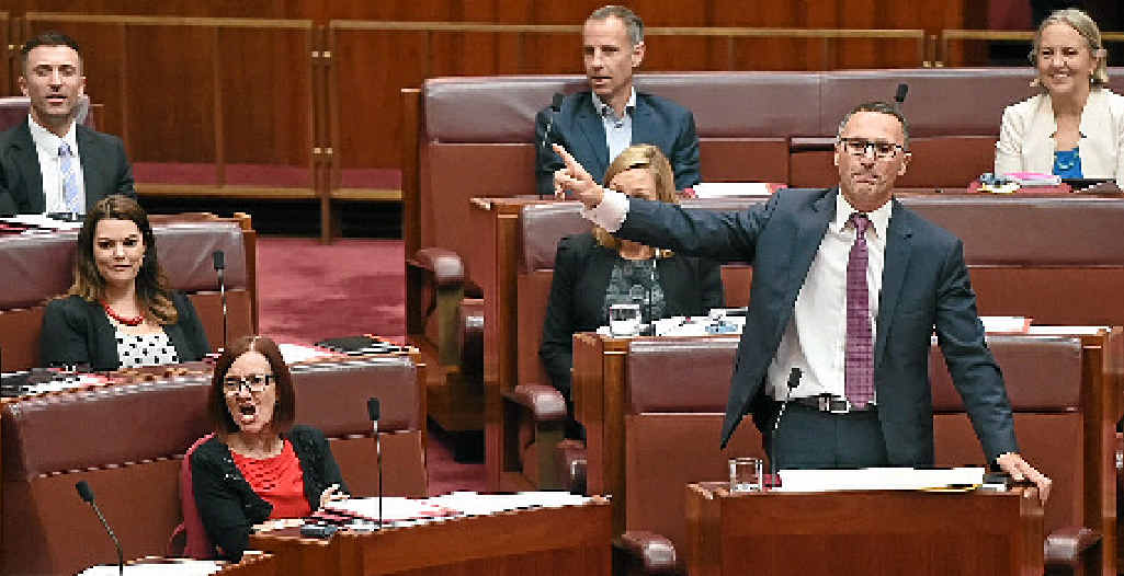 PUSHING REFORM: Greens leader Senator Richard Di Natale makes a point in the Senate, where emotions have been running high over electoral reform.