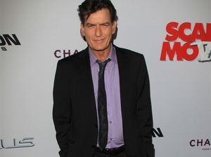 Sheen can't pay child support