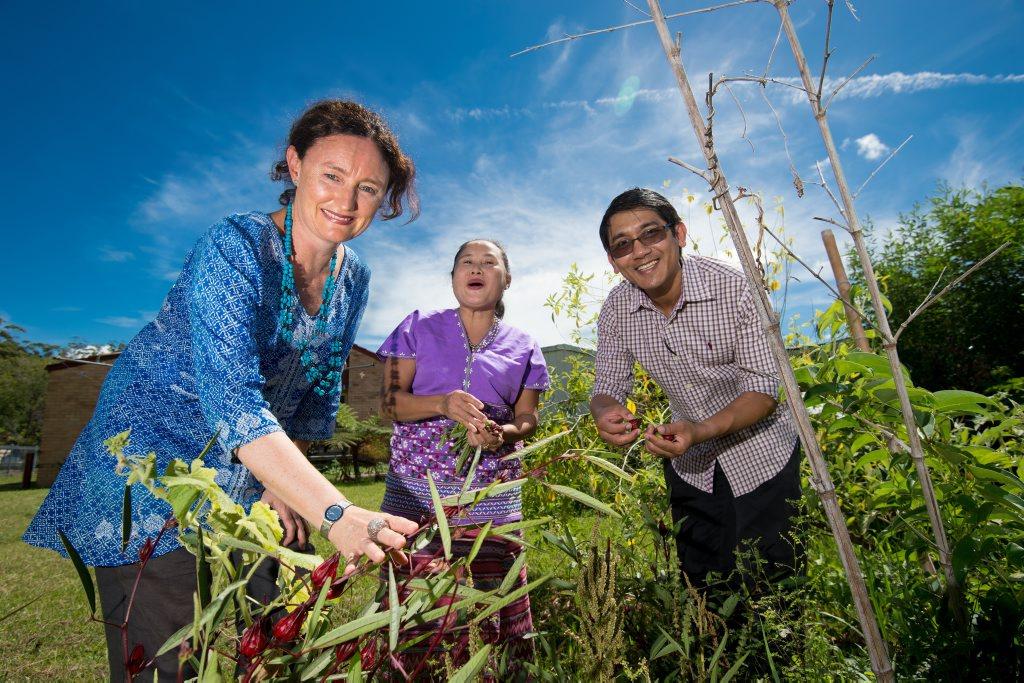 THE POWER OF FOOD: SCU filmmaker Mandy Hughes with local Myanmar community members Soe Tha Karen and Htun Htun Oo, in Soe's garden.