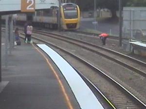 WATCH: Budgie rescued from Brisbane train tracks