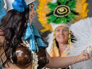 Hundreds celebrate culture at Harmony Day