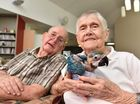 Pets visit to Anglicare Kirami Residential Care at Point Vernon - David and Shirley Thomson with this 17 week old macaw. Photo: Alistair Brightman / Fraser Coast Chronicle
