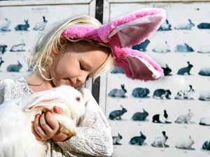 Castle has egg-cellent ways to entertain kids over Easter