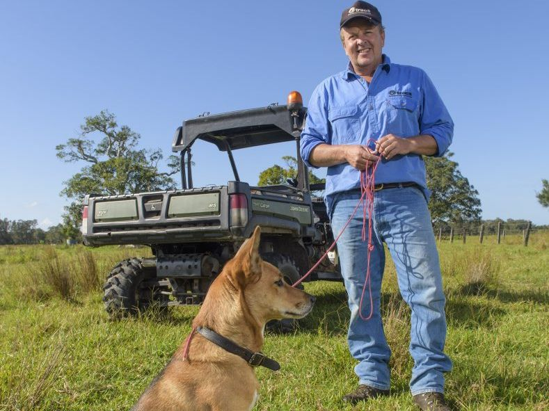 Private contractor Bill Crisp with his tracking dog