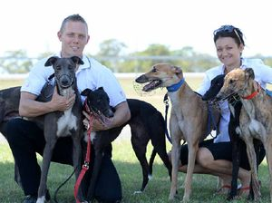 Chris hits top gear as he chases greyhound success