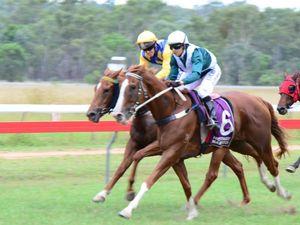 Queensland racing bill passes despite LNP opposition