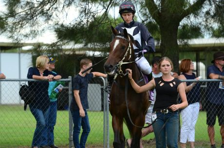 Duchess Staghurst saddled by Melody O'Brien gets led out to the enclosure. Photo Keagan Elder / South Burnett Times