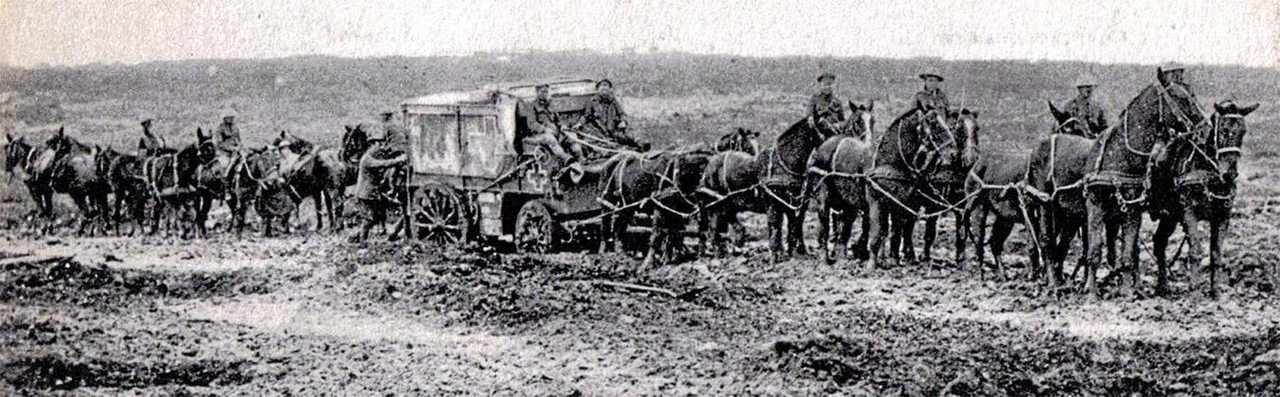 FIELD OF BATTLE: A mule train moves supplies during the First World War I. Drivers performed a dangerous job.