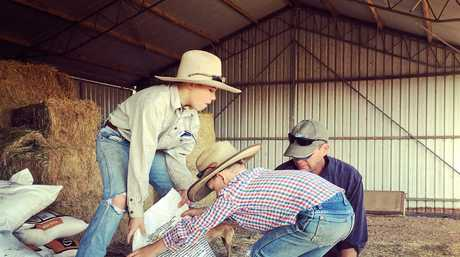 Andrew and Hamish help their dad shift feed in the shed.
