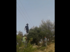VIDEO: This goat is just hanging around some power lines