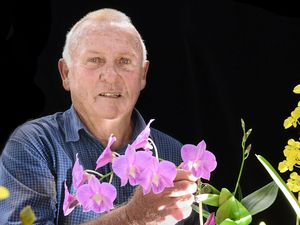 Lismore truckie's long-haul orchid obsession