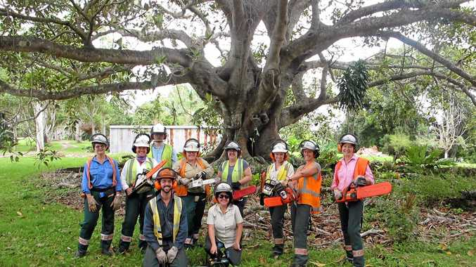 INDEPENDENT WOMEN: The Kyogle Evening Branch of the Country Women's Association gets stuck in with some heavy duty chainsaw training.
