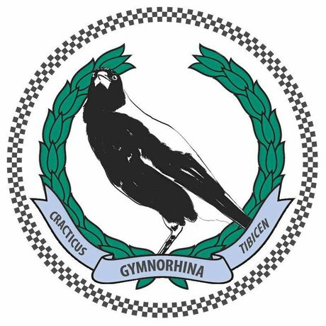 NSW Police today announced magpies would be recruited on the police force. The project name will be the 1st Avian Policing Response and Intelligence Liaison (APRIL).