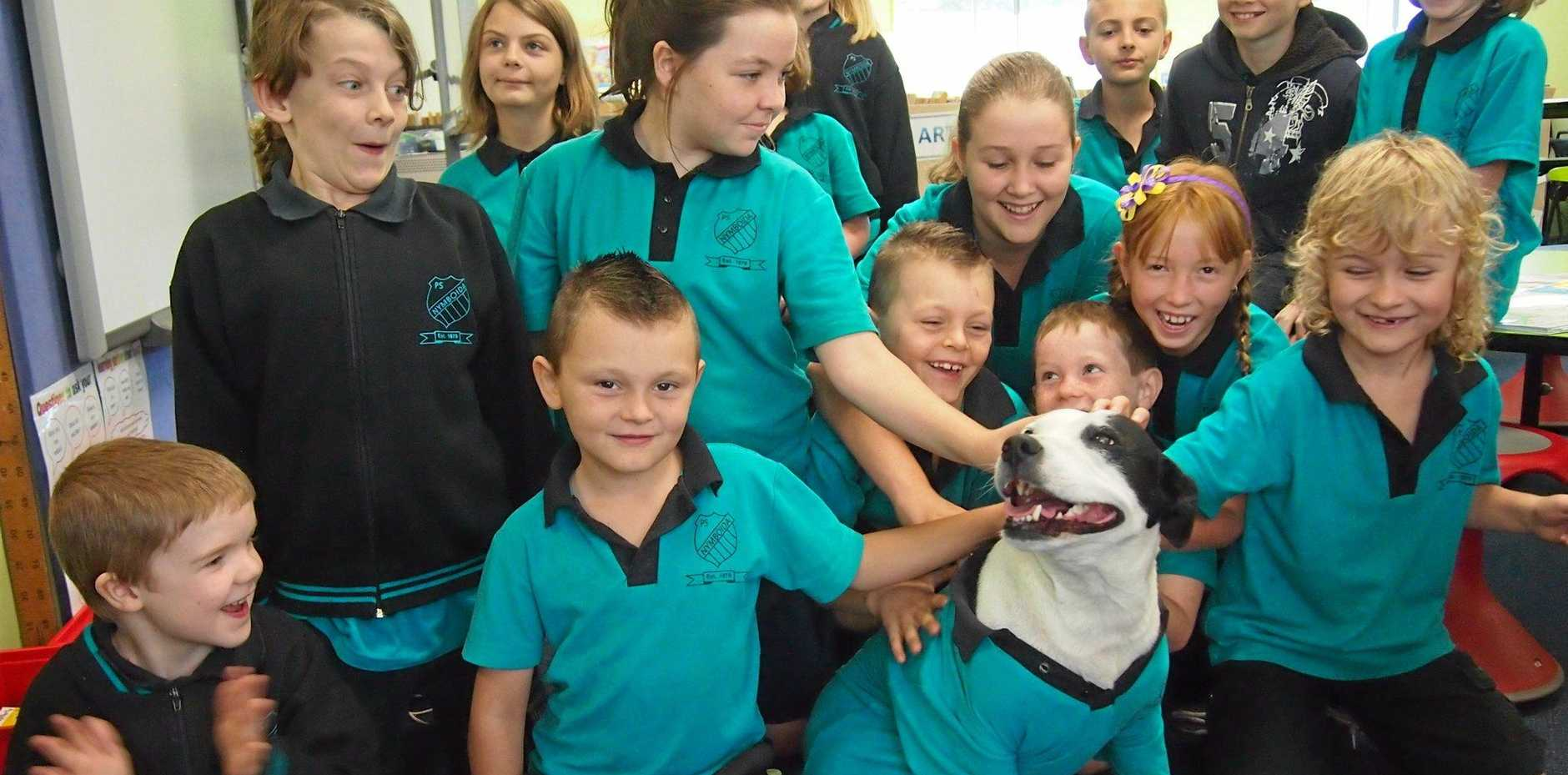 Nymboida Public School students get to know their new 'classmate' Patricia.