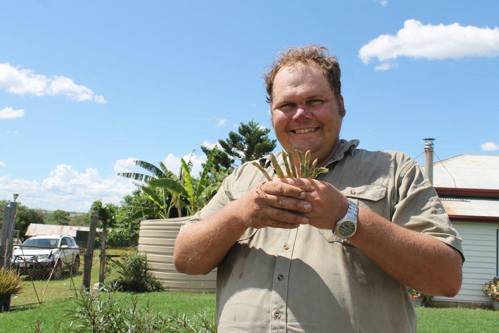 Yummy asparagus is just one of the eatable crops in Ben Lobegeier's vegetable garden.