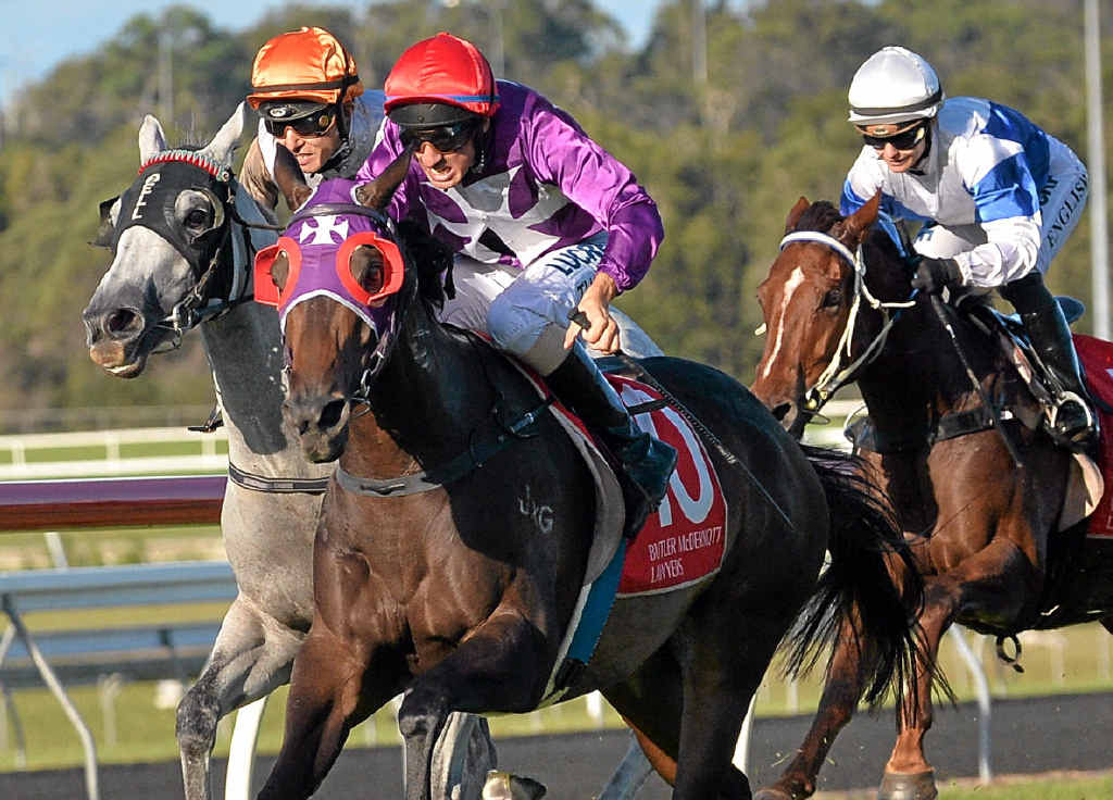 GET IT ON: Horse Get On claimed the James Ackerman Cup 1600m ridden by Nathan Thomas.