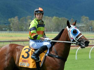 Racehorse trainer's trials and tribulations with Tumbler