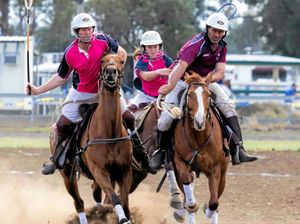 Second carnival course for polocrosse horses