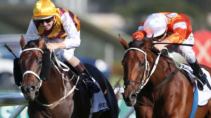Preferment will be among the top contenders for the Queen Elizabeth Stakes. Photo: AAP Images.