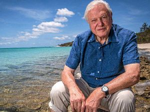 Sir David's Aussie jewel needs swift action to survive