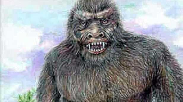 The Yowie remains an elusive creature in the Northern Rivers region. Illustration by Bill Rasmussen