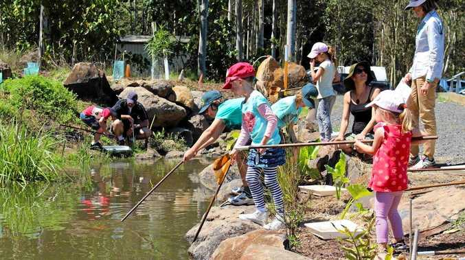 Enjoy free activities for children such as net dipping  at the Upcycle Your Holidays event on April 21 in Lismore.