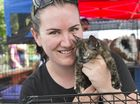 RESCUE ANIMALS: Jessica Otto cuddles a kitten at the adoption day event.