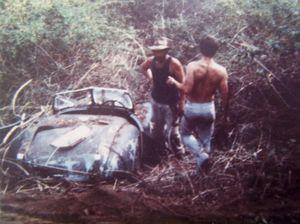 Does anyone recognise this Sunshine Coast Jaguar bush find?