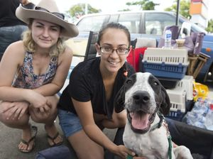 Off The Chain K9 Rescue adoption day