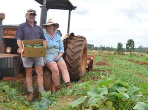 Imports threaten Australian vegetable production