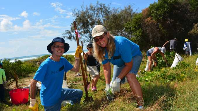 BeachCare volunteers Jenny Clifton and Ron Wildermoth tidy up the dunes at North Burleigh.