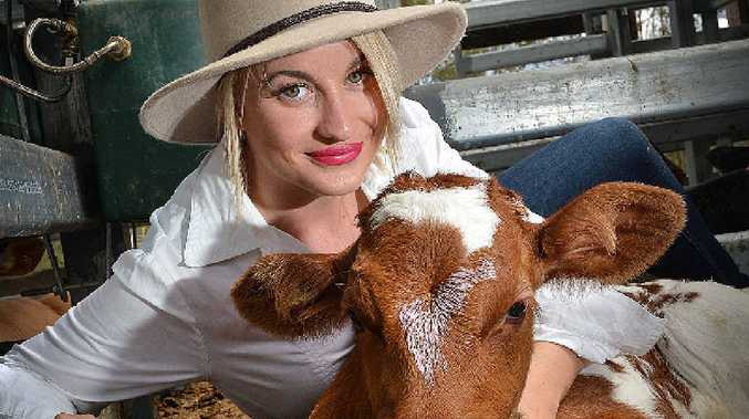 RAISING AWARENESS: Rural Ambassador entrant Shawnee Collier makes friends with a poddy calf at Gympie Saleyards yesterday. Gympie's Rural Ambassador will be named at the annual Show Ball at the Pavilion on Saturday night.