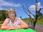 Pat Burns is shocked and bewidered that the garbos wouldn't collect her bin because of a frond hanging out. Photo: John McCutcheon / Sunshine Coast Daily