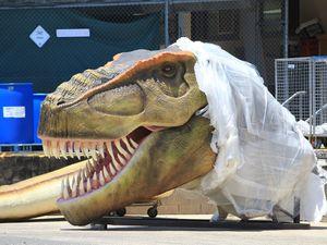 Palmer's dinosaurs: a history