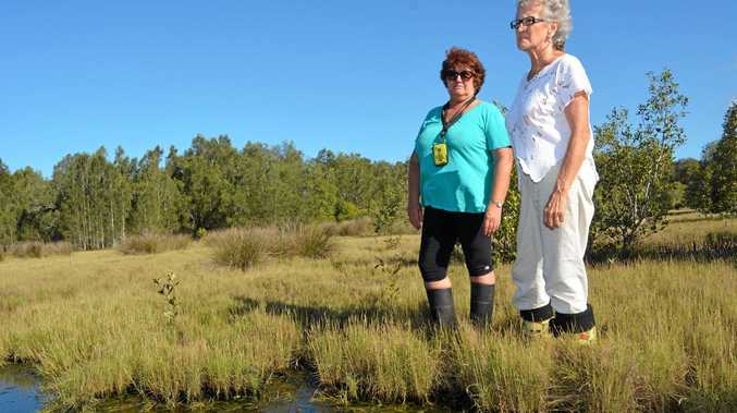 ANGRY: Tugun Cobaki Alliance member Lindy Smith and president Jackie McDonald are fighting to save the Cobaki wetlands.