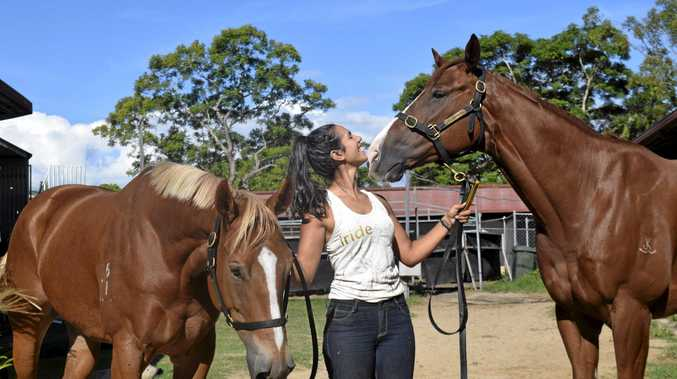 BONDING: Track work rider Tahaila Stevenson shows off Simbah (left) and Johnny Feedback, who will start their new campaigns at the Grafton race track today.