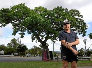 LETTER: Tree was least of road safety worries