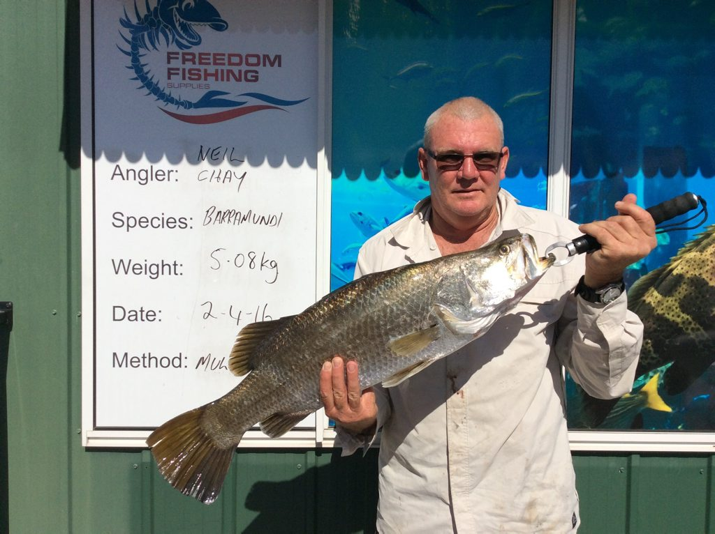 Neil Chay weighed in this lovely eating barra recently. It was just over 5kg. Photo Freedom Fishing Supplies