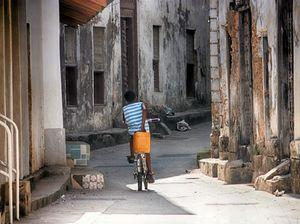 Tanzania trip a delight for photographer
