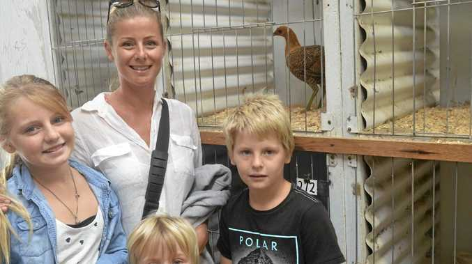 Corine Porter with Charlize, Ethan and Kaden they try to pick their favourite show bird.