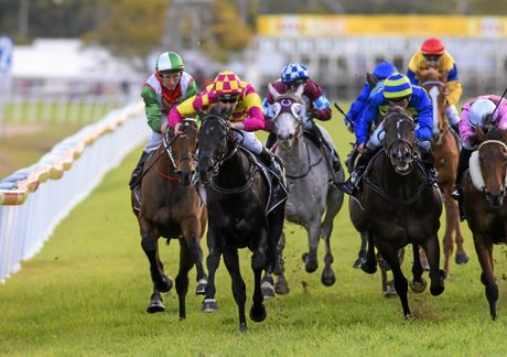 Blake Shinn pushes hard and takes topweight Bonfire to the Grafton Cup win edging out 4- Kapour (right) Photo Adam Hourigan / The Daily Examiner