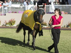 Honey Toast delivers Toowoomba Cup