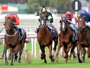 No Winx, but Stars still come out for racing