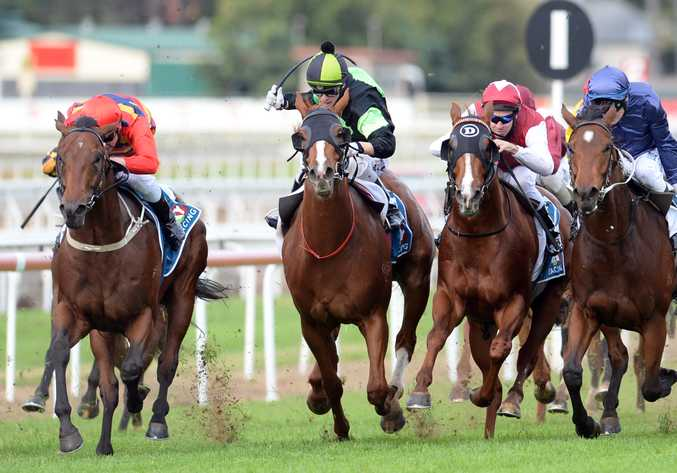 Sir Moments, on the way to victory in Brisbane, will lump the top weight of 61 kilograms in the Tails Stakes. Photo: AAP Image