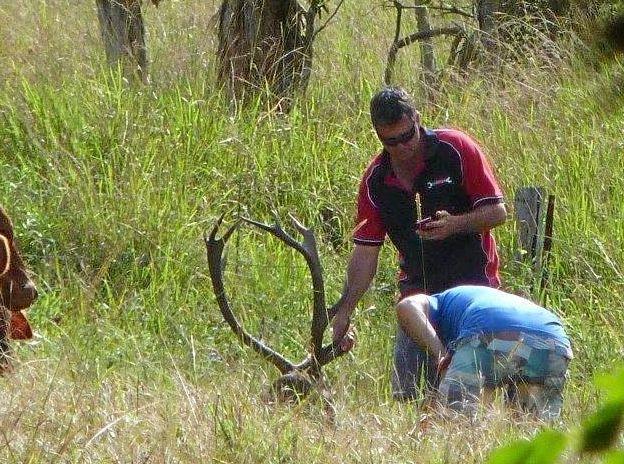 Neighbour overlooks John deer's carcass