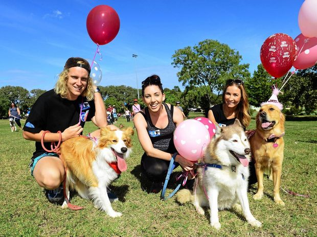 BEST FRIENDS: Participating in the Million Paws Walk through Limestone Park from left, Jay Mansinger of North Ipswich, Laura Albury of Willowbank, and Hailee Hollister of North Ipswich.